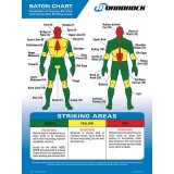 Baton Trauma Zone Poster and Quick Reference Tool