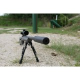 AAC 300-SD Remington Suppressor  SKU 86604