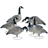 Full Body Goose Decoy Relaxed/Walker (6 Pack)