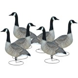 Full Body Goose Decoy Sentry (6 Pack)
