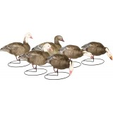 Last Pass High Definition Field Blue Goose Decoys Outfitter (6-Pack)