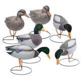 Field Mallard 6 Pack Outfitter, Pack Flocked Mallards