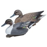 Gunner High Definition Pintail Floating Decoy, 6 Pack